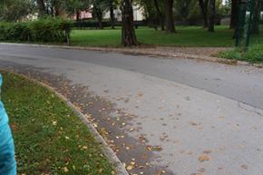 Slika 2: Neoznačen prehod za pešce