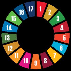 UN_The Sustainable Development Goals